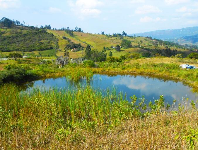 proyecto gaia lago