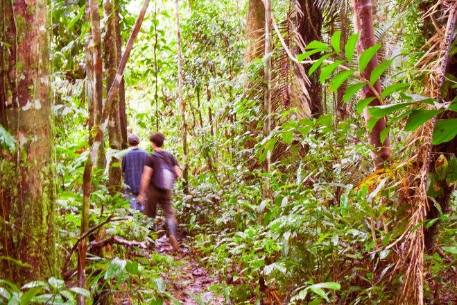 caminata en la selva amazonas colombia