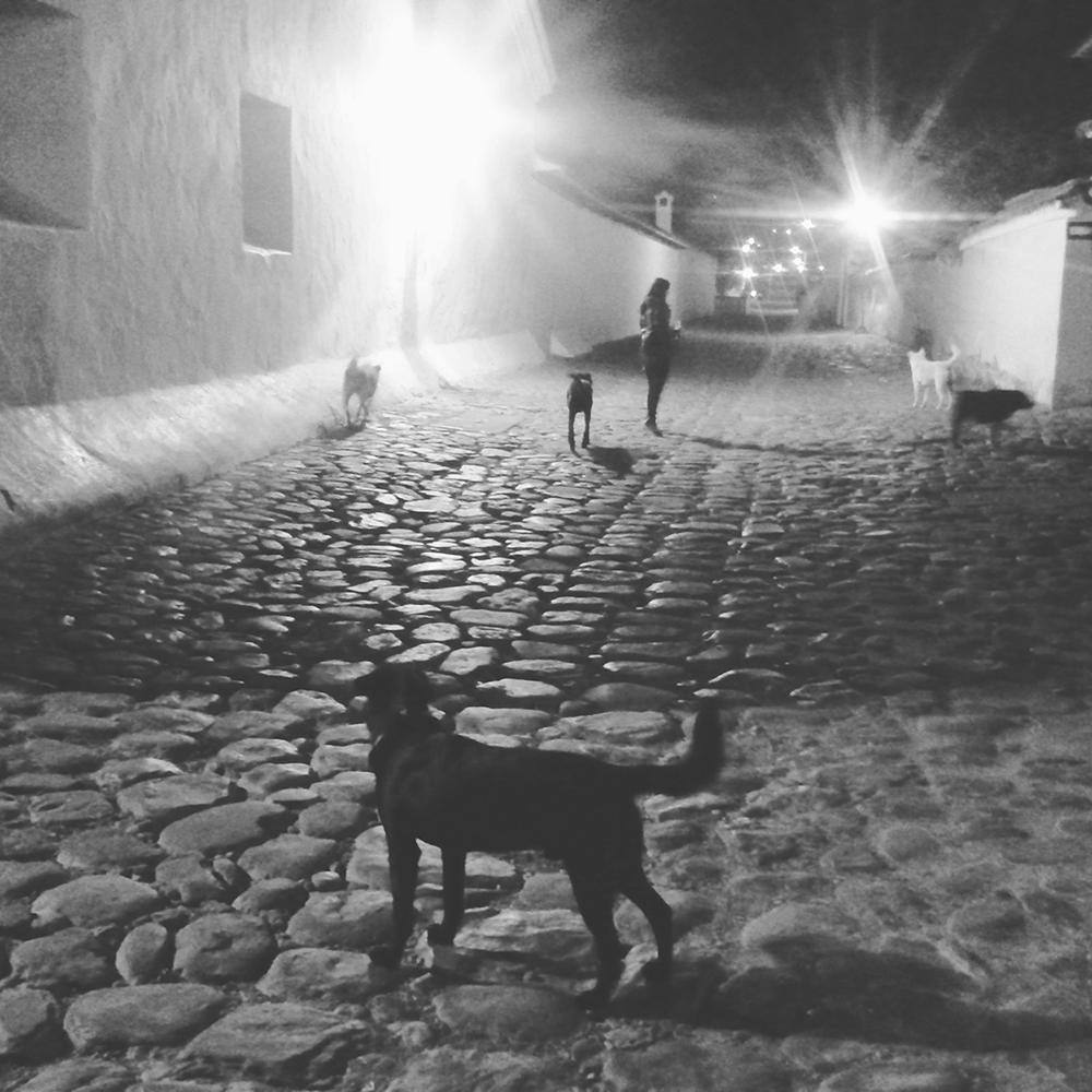 Blog Crecimiento Personal Meditación Superación Personal Conciencia Osho Buda Reflejos de Luz Villa De Leyva Colombia Viajes Sueños Noche de sueño copia